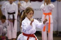 Международный турнир по каратэ EurAsia Cup, Фото: 8