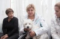 Всероссийская выставка собак 2017, Фото: 6