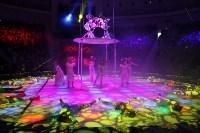 В Тульском цирке состоялось открытие новогодней губернаторской ёлки, Фото: 2