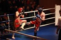 В Туле прошла матчевая встреча звезд кикбоксинга, Фото: 31