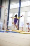 Спортивная гимнастика в Туле 3.12, Фото: 123