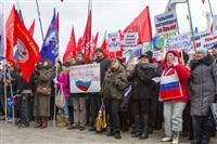 В Туле проходит митинг в поддержку Крыма, Фото: 10