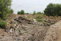 В тульском Заречье жители год добиваются ликвидации ядовитой свалки, Фото: 39