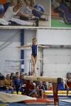 Спортивная гимнастика в Туле 3.12, Фото: 157