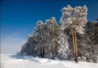 Русская зима, Фото: 8