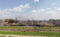 Горит поле напротив ТулСВУ, Фото: 8