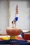 Спортивная гимнастика в Туле 3.12, Фото: 1