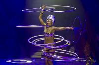 Шоу фонтанов «13 месяцев» в Тульском цирке – подарите себе и близким путевку в сказку!, Фото: 52