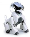 Планета роботов, Фото: 1