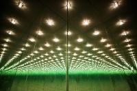Стеклянный лабиринт в Туле, Фото: 1
