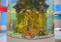 Чистка аквариумов магнитными щётками, Фото: 9