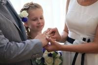 День семьи, любви и верности во Дворце бракосочетания. 8 июля 2015, Фото: 21