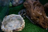 Аквакласс, Фото: 11