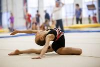 Спортивная гимнастика в Туле 3.12, Фото: 184