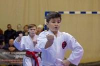 Соревнования по восточному боевому единоборству, Фото: 50