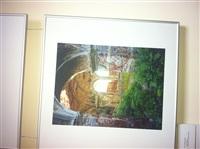 Фотовыставка о Куликовом поле в здании УМВД, Фото: 8