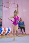 Соревнования по художественной гимнастике 31 марта-1 апреля 2016 года, Фото: 15