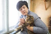 Волонтеры спасли кошек из адской квартиры, Фото: 78