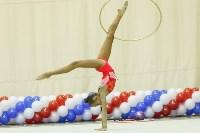 Художественная гимнастика. «Осенний вальс-2015»., Фото: 23