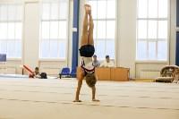 Спортивная гимнастика в Туле 3.12, Фото: 30