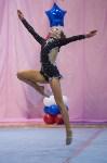 Соревнования по художественной гимнастике 31 марта-1 апреля 2016 года, Фото: 132