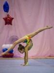 Соревнования по художественной гимнастике 31 марта-1 апреля 2016 года, Фото: 29