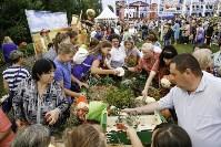 Праздник урожая в Новомосковске, Фото: 66