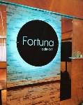 Фортуна, Фото: 2