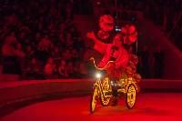 Туляков приглашают на новогоднее представление «Ёлка в цирке», Фото: 45