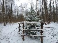 В Тульском лесу нашли загадочную поляну с крестами, елкой и зеркалами, Фото: 3