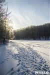 Зимняя сказка Платновского парка, Фото: 14