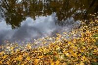 Золотая осень в Туле-2019, Фото: 30