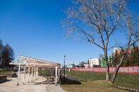 Крокусы в Туле , Фото: 5