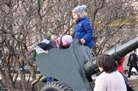 В Туле прошел митинг в поддержку Крыма, Фото: 18