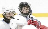 Председатель правительства Тульской области Юрий Андрианов вручил санки следж-хоккеистам региона, Фото: 10