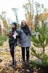 В Центральном парке Тулы появился сосновый бор «Слободы», Фото: 15