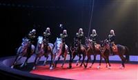 Новая программа в тульском цирке, Фото: 4