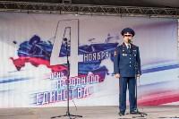 День народного единства в Тульском кремле, Фото: 13