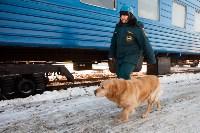 Учения МЧС на железной дороге. 18.02.2015, Фото: 6