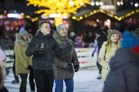 В Туле завершились новогодние гуляния, Фото: 16