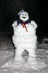 Задорные снеговики, Фото: 7