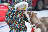 Праздник северных собак на Куликовом поле , Фото: 49