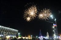 В Туле завершились новогодние гуляния, Фото: 42