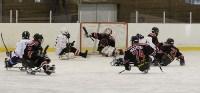 «Матч звезд» по следж-хоккею в Алексине, Фото: 20