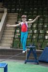Новая программа в тульском цирке, Фото: 13