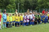 День массового футбола в Туле, Фото: 91