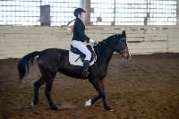 Открытый любительский турнир по конному спорту., Фото: 10