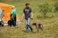 Выставка охотничьих собак под Тулой, Фото: 59