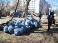 Субботник 29 марта 2014 год., Фото: 34