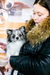 Выставка собак в Туле, Фото: 21
